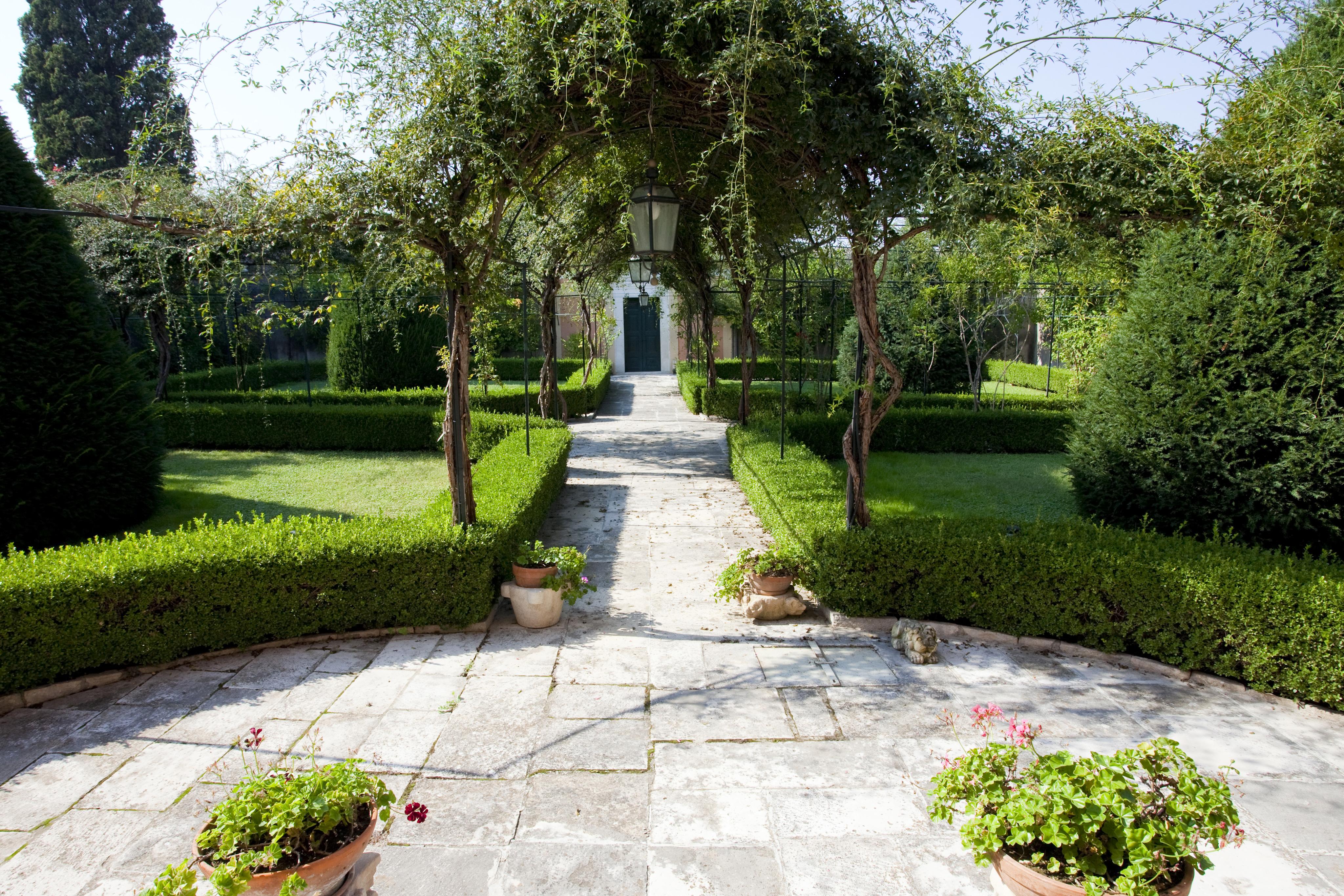 Giardino interno passiamo ora alle cose pi complesse in - Giardino interno casa ...